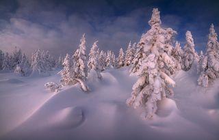 Кудесница зима